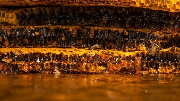 ミツバチの巣のクローズアップ、蜂の巣とハニカムパターン