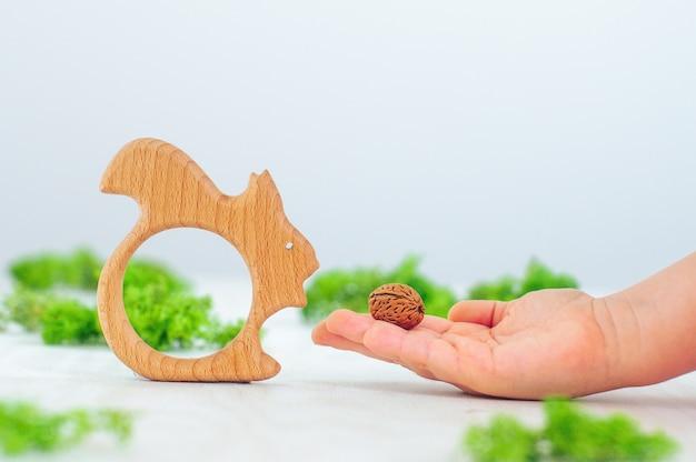 가벼운 벽에 너트와 나무 유기 아기 teether 장난감 다람쥐와 노는 아이 손의 닫습니다