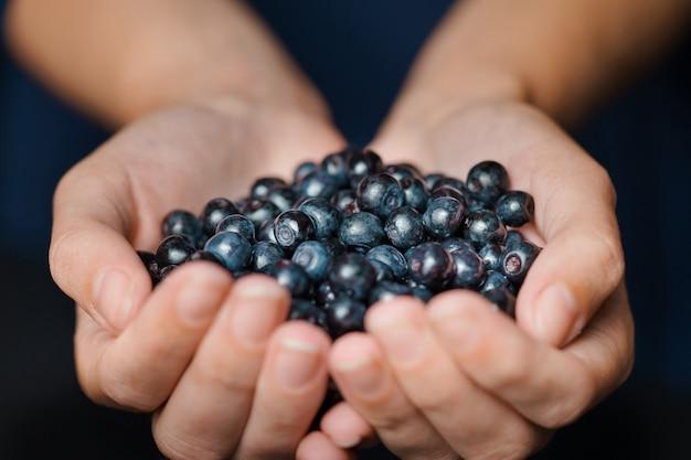 若い女の子の手に大きな新鮮なブルーベリーのクローズアップ。ブルーベリーは庭や森で収穫されます。