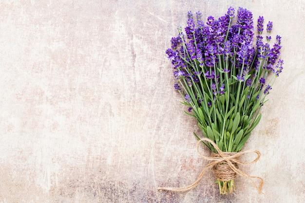 라벤더 꽃의 근접 촬영