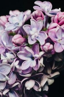 黒い表面のライラックの花のクローズアップ