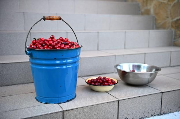 階段の上に立っている、桜の収穫でいっぱいの金属製のバケツとボウルのクローズアップ。さくらんぼの収穫