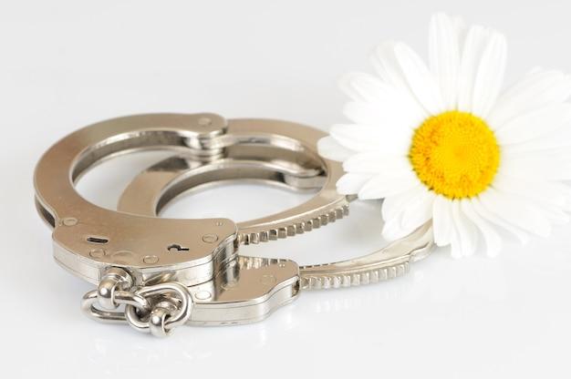 白い背景の上に分離された金属製の手錠、鍵、カモミールの花のクローズアップ。性的なゲームとbdsmの概念の練習