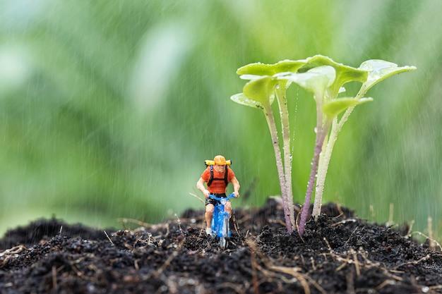 土の上にケールスプラウトが生えているミニチュア自転車のクローズアップと、雨の中で自転車に乗る。
