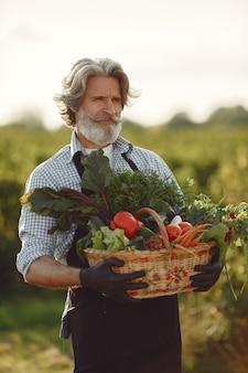 Закройте вверх старого фермера, держащего корзину с овощами. мужчина стоит в саду. старший в черном фартуке.