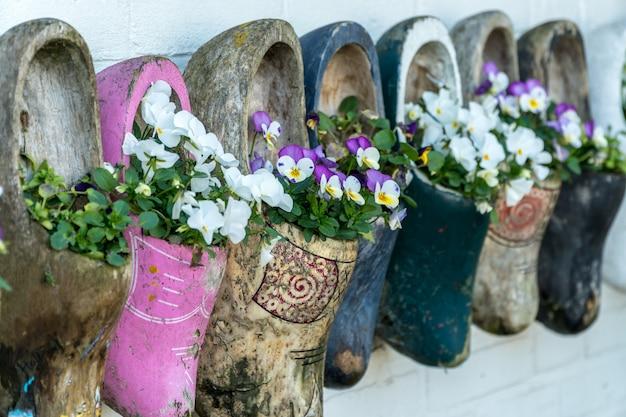 개화 꽃과 오래 된 나무 나막신의 클로즈업