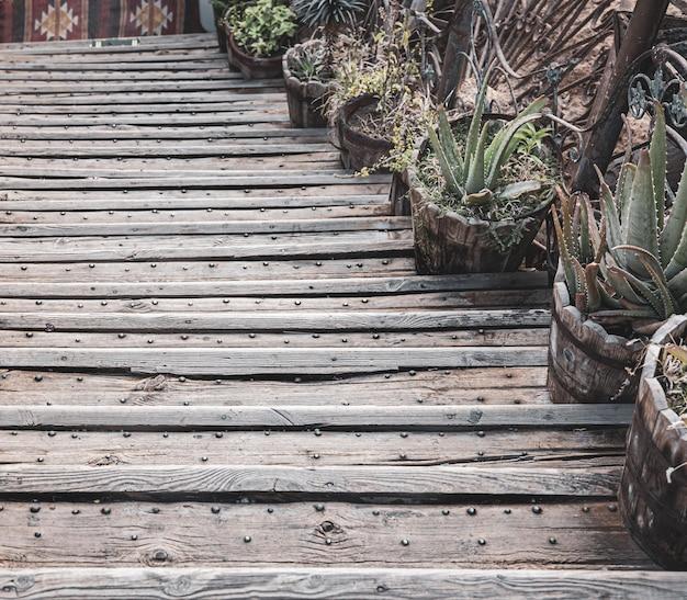 木製の階段の上の植物と古い植木鉢のクローズアップ