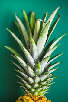 Close-up of pineapple with green leaves on colored background
