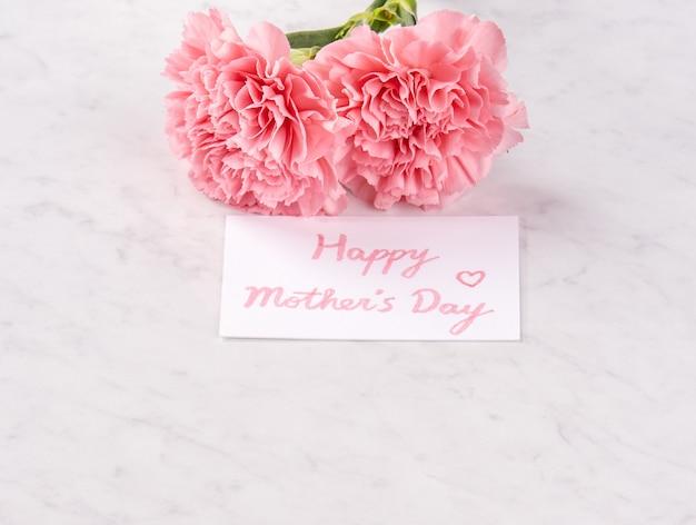 Крупным планом розовая гвоздика на белом фоне для цветка дня матери
