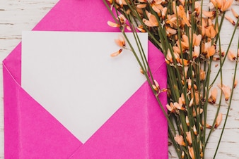 Close-up of pink envelope with blank note