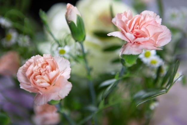 Крупный план розовых цветов декоративных гвоздик в свежем красивом букете