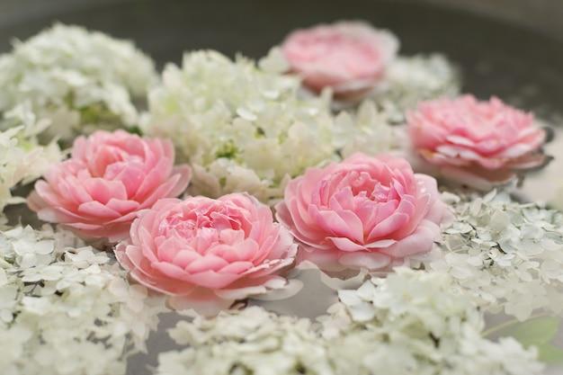 방울과 물에 핑크 장미 꽃과 흰색 수국의 근접