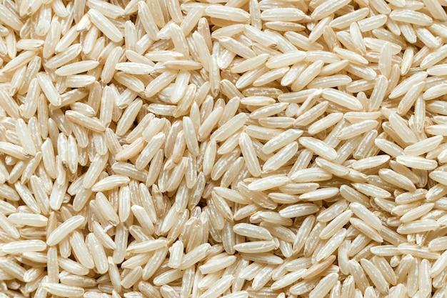 쌀 곡물의 클로즈업