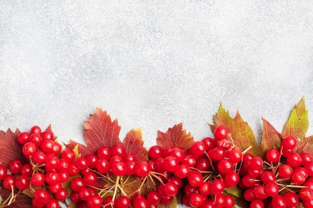 熟した赤い果実のクローズアップ