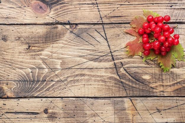 熟した赤い果実のクローズアップ Premium写真