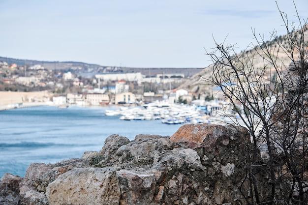 Крупный план скал и безлистного кустарника на фоне размытой бухты с гаванью