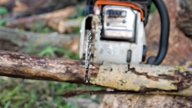 チェーンソーで乾いた枝を鋸で挽くクローズアップ。
