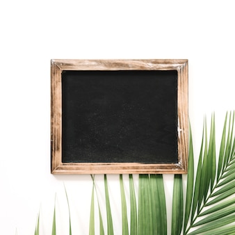 Close-up of slate and palm leaf over white background