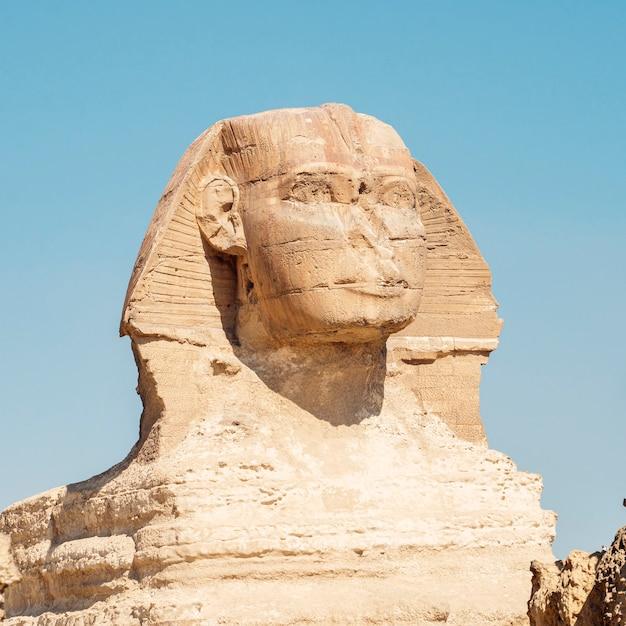Крупным планом большой сфинкс гизы, египет. известняковая статуя лежащего сфинкса, мифического существа с телом льва и головой человека на фоне голубого неба.