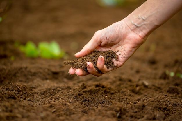 自然保護と農業または園芸の概念で新たに掘られた、または耕作された一握りの豊かな肥沃な土壌を持っている女性の手のクローズアップ。