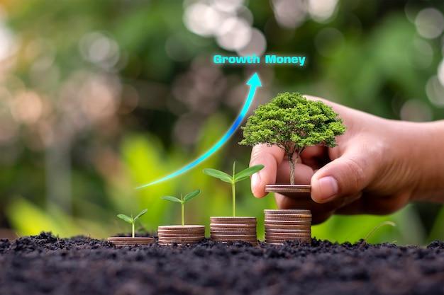 녹색 보케 배경에 동전과 쌓인 동전에서 자라는 나무의 클로즈업. 비즈니스 개념 금융 및 돈 미래를 준비하기 위해 돈을 저장합니다.