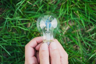 Close-up of two hands holding light bulb against green grass