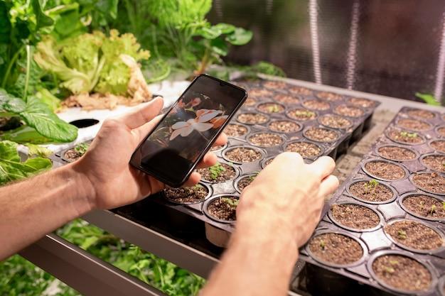 사진으로 식물을 검색하는 동안 스마트 폰 앱을 사용하여 인식 할 수없는 재배자의 클로즈업