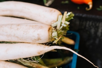 Close-up of white daikon radish