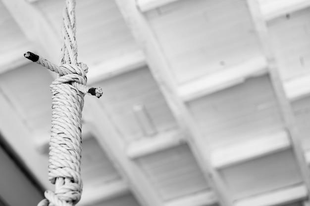 白い絞首刑執行人の結び目のクローズアップ