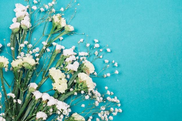 青色の背景に白のリモニウムと石膏の花のクローズアップ