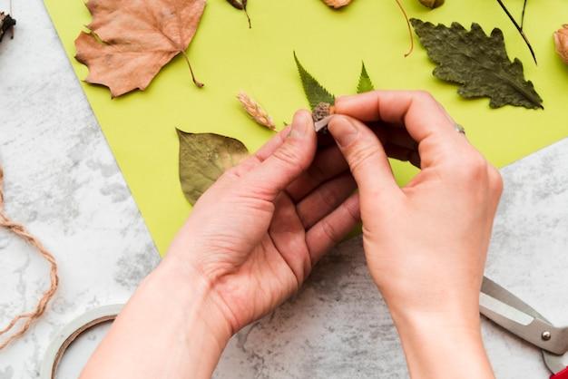 緑色の紙の上の葉を付着する女性のクローズアップ