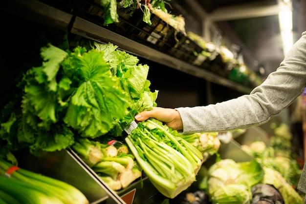 슈퍼마켓에서 상 추를 복용하는 여자의 닫습니다. 시장 식품 개념.