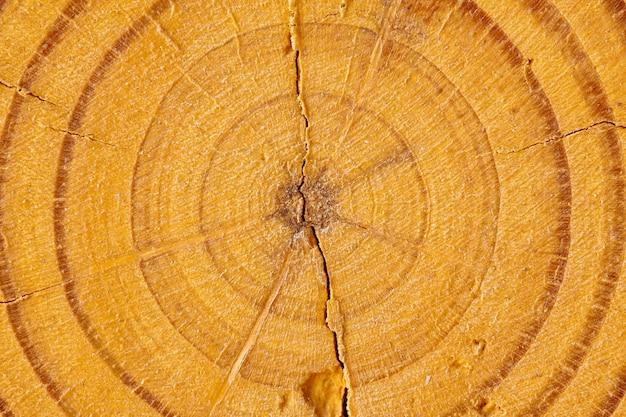 Крупный план деревянного раздела