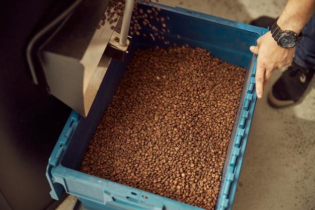 전문 커피 로스팅 기계를 사용하는 동안 콩 방출 슈트에서 플라스틱 용기를 들고 젊은 남자의 닫습니다