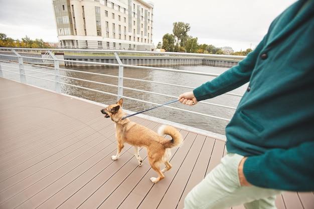 도시의 거리를 따라 가죽 끈에 자신의 강아지와 함께 산책하는 젊은 남자의 근접