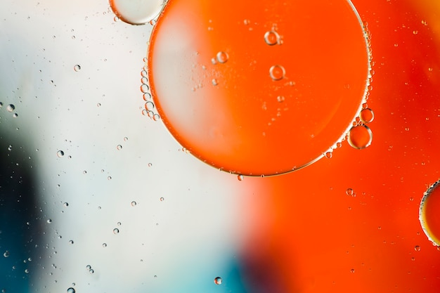 Close-up oily bubbles and droplets in colourful watery backdrop