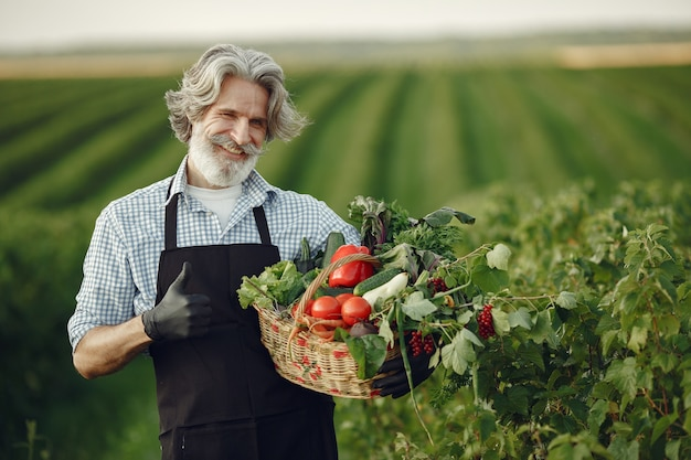 Close up of old farmer holding a basket of vegetables. the man is standing in the garden. senior in a black apron.