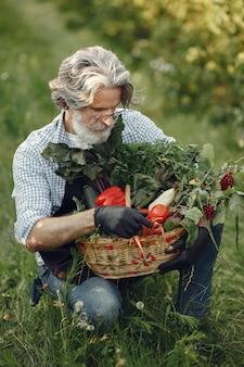 Chiuda in su del vecchio contadino che tiene un cesto di verdure. l'uomo è in piedi in giardino. senior in un grembiule nero.