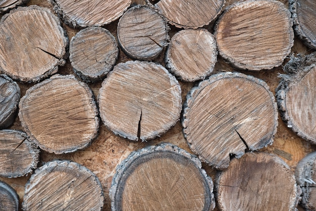 Close up of old wooden stumps with natural patterns. shabby wooden background