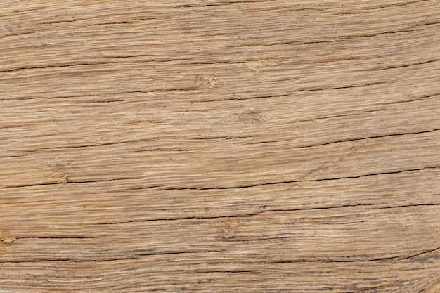 Close up of old wooden trunk texture