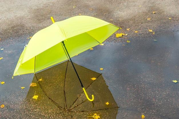 Крупным планом на bbright желтый зонтик в луже