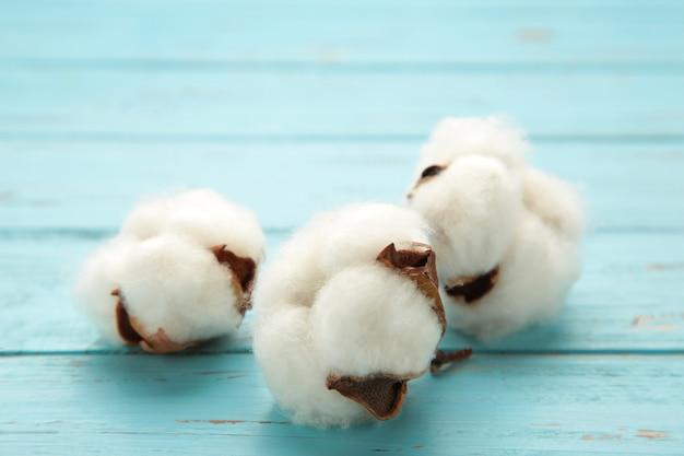 美しい白い綿の花にクローズアップ