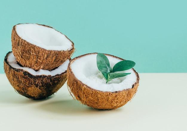 緑と黄色の背景にココナッツのクローズアップ