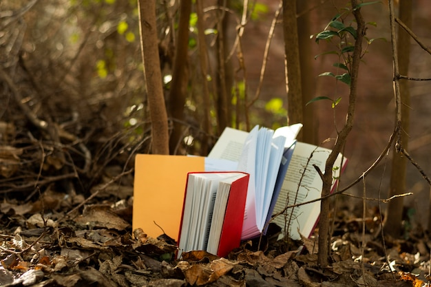 Крупным планом на стопке красочных книг