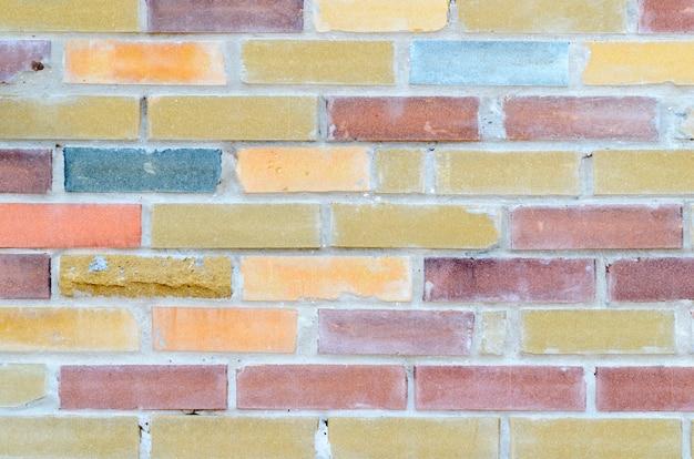 Крупным планом на фоне красочной кирпичной стены