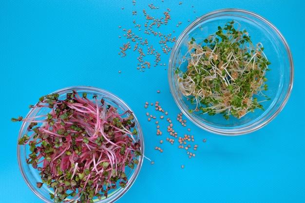 Крупным планом свежие ростки редиса и рукколы в мисках