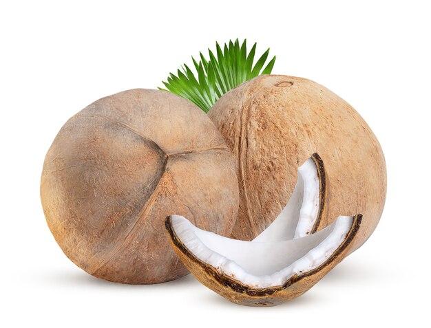 分離した大きくて熟したココナッツのクローズアップ