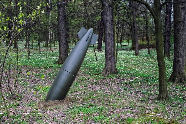 Крупным планом на осечку или неразорвавшуюся бомбу в лесу