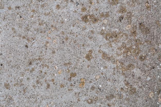 Крупным планом на старой бетонной стене с мхом