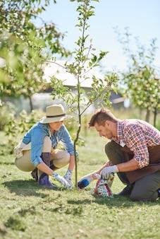 Крупным планом людей, сажающих дерево в своем саду